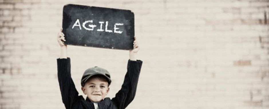Agile | Blauw Research